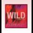 Kép 2/4 - Huda Beauty - Szemhéjpúder paletta - Chameleon Wild Obsessions